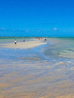 """Maré seca, ou maré baixa, na Ponta Verde, linda praia em Maceió, capital do estado de Alagoas, Brasil. Na maré seca a praia fica simplesmente espetacular, formando pequenas """"piscinas"""" e o turista tem a possibilidade de caminhar sobre os corais mar adentro.  Fotografia: marciorai."""
