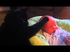 Cat soothes crying baby with magical cat powers. Click on link to view.