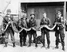 Vietnam war era pics of special units, LRRPS, MACV SOG,AATV,SEALS,FFL ...