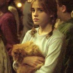 Harry Potter Girl, Mundo Harry Potter, Harry Potter Icons, Harry Potter Tumblr, Harry Potter Hermione, Harry Potter Jokes, Harry Potter Pictures, Harry Potter Aesthetic, Harry Potter Fandom