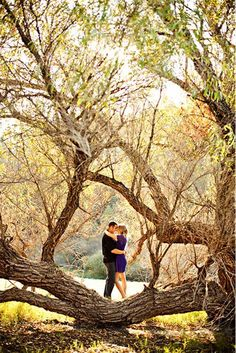 Forest Engagement Photos For Those Who Love Nature