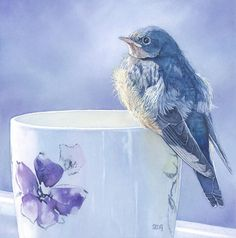 Barn Swallow fledgling on a cup watercolor painting by Shirley Greenville original bird art realism