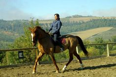 ****Dressage and Trail in Tuscany**** Tuscany, Italy No single supplement and 100 Euro discount for bookings before June 9th! (8 days / 7 nights, rate from $1,170)  Find out more at: http://www.hiddentrails.com/tour/italy_dressage_tuscany.aspx