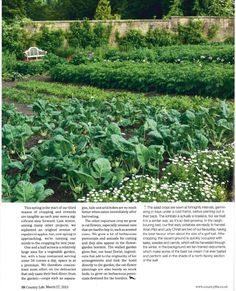 Country Life March 2013  Page 6.