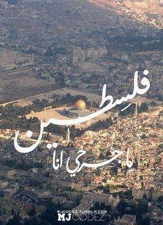 يا شعب عمرو ما انحنى..لترجعي إنت لنا..برمي أنا قلبي حجر