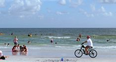 2020 Top Springtime Events and Festivals on the Florida Gulf Coast. Great Places, Places To Go, Circus Art, Local Bands, Anna Maria Island, Pub Crawl, Beer Festival, Social Events, Spring Time