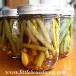 Pickled Green Beans - Dilly Beans - How to Pickle Green Beans >> This turned out so great last year...time to do it again!!