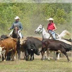 Creative Birthday Ideas for Men —by a Professional Event Planner Man Birthday, Birthday Ideas, Cattle Drive, Bluegrass Music, Lone Ranger, Cowboy Art, Best Western, Horseback Riding, Rafting
