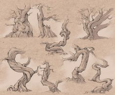 Tree study - trying to make these daily