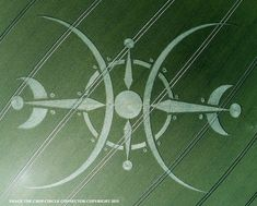 Crop Circle at Clearbury Ring, nr Nunton, Wiltshire. Reported 6th July? 2015