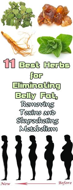 11 Best Herbs for Eliminating Belly Fat d90b37b7744