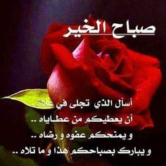 Good Morning Arabic, Good Morning Today, Good Morning Sunshine, Morning Wish, Morning Message For Her, Good Morning Messages, Morning Images, Morning Quotes, Arabic Love Quotes