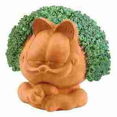 22 best chia pets images chia pet, decorative planters, drip traygardield chow chow, juice fast, chia seeds, chia pet, juicing, pets