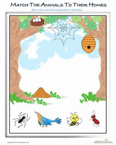 Preschool Plants, Animals & the Earth Worksheets: Animals and their Homes