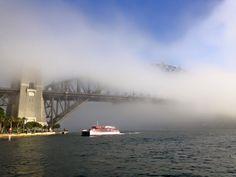 A foggy day in Sydney