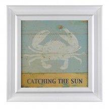 Catching the Sun Wall Art