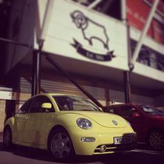 My babiiee bertie <3 #love #bertie #vw #car #beetle #perfect
