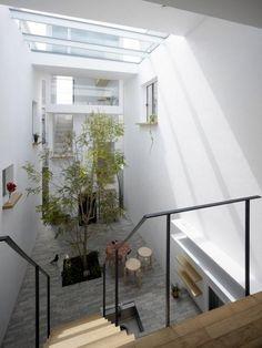 Home Inspiration  Un arbre à l'intérieur (7)