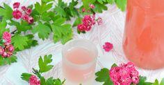 Rezept für einen leckeren Rhabarber Likör passend zur Saison