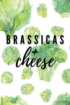 When pairing a brassica with cheese, scientists say factoring in the vegetable's pungent sulfuric odor and sweet taste is key. See how the experts recommend combining these two for peak seasonal indulgence. Kale Plant, Grilled Broccoli, Sauteed Kale, White Pizza, Cheese Pairings, Cabbage Leaves, Chinese Cabbage, White Food, Cheese Sauce
