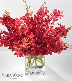 A bouquet of 10 red orchid stems presented in a frosted glass vase.