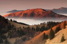Sunset in The Greater Fatra, Slovakia. Mountain Photography, Landscape Photography, Mountain Range, Homeland, Trekking, Flora, Earth, Explore, Photo And Video