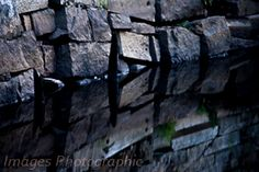 Stone wall on the Taunton River.