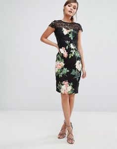 Paper Dolls Floral Print Pencil Dress With Lace Upper