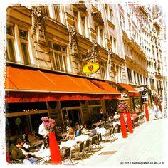 ZUM SCHWARZEN KAMEL Vienna, Places To See, Restaurants, Street View, Instagram, Camel, Photographers, Restaurant