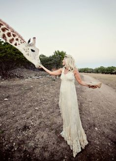 Giraffe, Wedding Picture, Dress