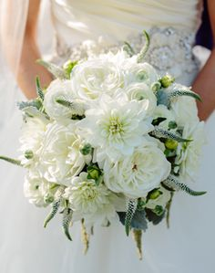 WeddingChannel Galleries: White Bridal Bouquet