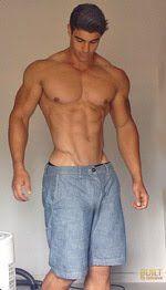 Pecs Muscle Pecs