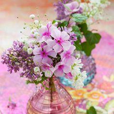 Clematis in pink vase