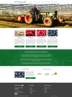 Website ontwerp Aspergekwekerij van Cranenbroek Website, Asparagus