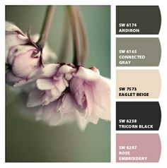 love this color palette!!!