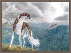 A day in the mountains by Annushkathesetter on DeviantArt