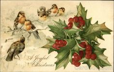 Vintage Christmas Post Card for Mr Ralph Nichols of Rhode Island in 1910.  A Joyful Christmas - Birds and Holly