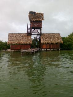 Island Passion
