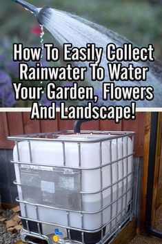Rainfall and snow in your backyard landscaping – Greenhouse Design Ideas