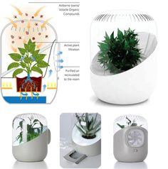 air purification plants mechanism - Google 검색