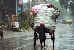 Penarik becak (rickshaw) India mengangkut barang saat hari hujan di Kolkata.