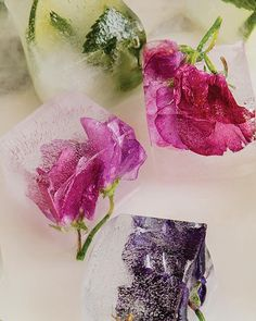 How to: Flower Ice Cubes