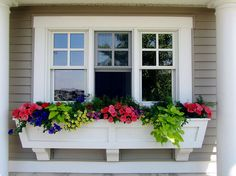 Window Box Flowers for Sun. would be so cute outside my studio and if we got rid of the bushes in front of d.r.