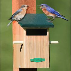 Sparrow-Resistant Bird House - U. of Kentucky finds that plastic roofs and rectangular openings deter sparrows and encourage bluebirds.