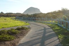 Morro Rock from Coisters Park