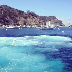 Catalina Island....visited while on a cruise off the California coast in 1994.