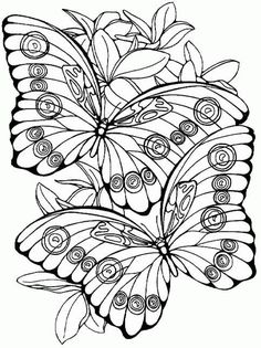 Two Butterflies with flowers color page. Animal coloring pages. Coloring pages for kids. Thousands of free printable coloring pages for kids! Cool Coloring Pages, Animal Coloring Pages, Printable Coloring Pages, Adult Coloring Pages, Coloring Sheets, Coloring Books, Kids Coloring, Butterfly Coloring Page, Mandala Coloring