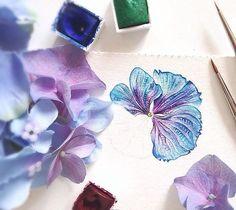 Hortenzie.. Ty jeji barvy🌸🎨 Love these colors💕 #ilustrace #leto #miluju #instaart #akvarel #watercolor #painting #love #illustration #colors #art #malovani #nature #priroda #artlover #canson #paint #flowerart #lovepainting #instapaint #krasnyden #windsorandnewton #czech #praha #prague #kvetiny #summer #flowers #hydrangea #picoftheday