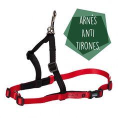 Te contamos lo útil que puede ser éste collar antitirones para poder disfrutar los paseos con tu peludo. #collaresparaperros #collares #lifestyle #perros #consejosparaperros Walks, Tips, Necklaces, Life