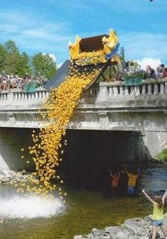Bellaire Michigan Events - Bellaire Chamber - rubber ducky festival. This looks like a lot of fun!